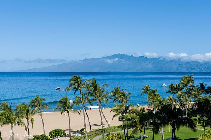 Driving Around Maui: 4 Scenic Drives to Check Off Your Bucket List