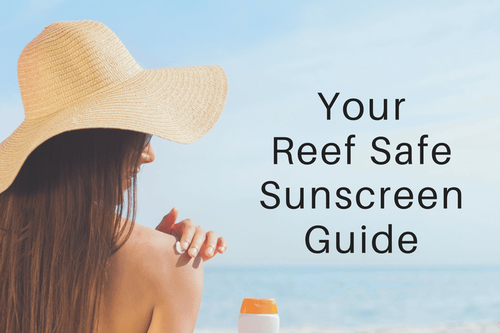 your reef safe sunscreen guide 15 sunscreens that are reef safe